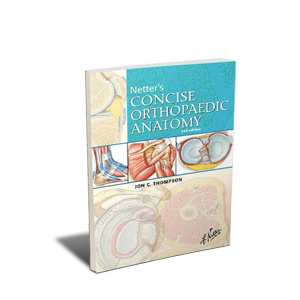 CME - Netters Concise Orthopaedic Anatomy
