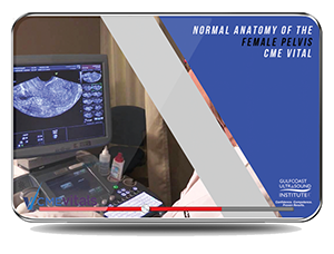 CME - Normal Lower Extremity Arterial Anatomy & Physiology