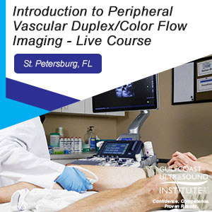 Introduction to Peripheral Vascular Duplex/Color Flow Imaging