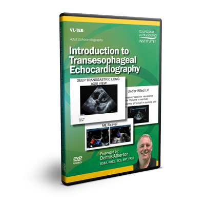 Introduction to Transesophageal Echocardiography