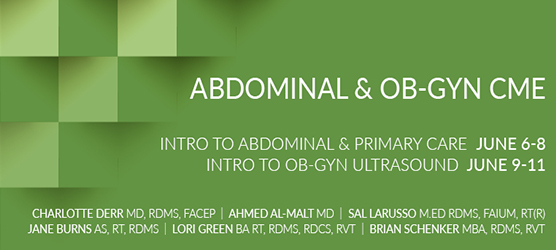 Introduction to Abdominal/Primary Care and OB/GYN Ultrasound Education